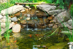 pond-maintenance-services-rochester