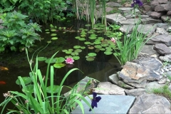 Pond Aeration Installers Rochester NY