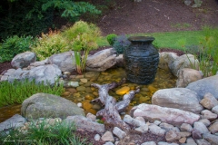 pond-services-rochester-ny