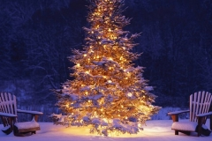 OutDoor Christmas Lighting Designers Rochester NY