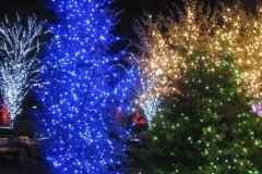 OutDoor Christmas Lighting Professional Rochester NY