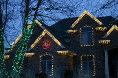 Seasonal Lighting Rochester Monroe County