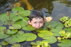 Pond Cleaners Rochester NY